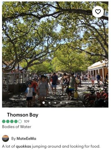 rottnest thompson bay